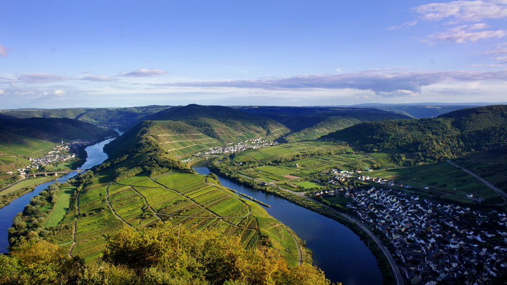 mosel-vineyards-germany (1)