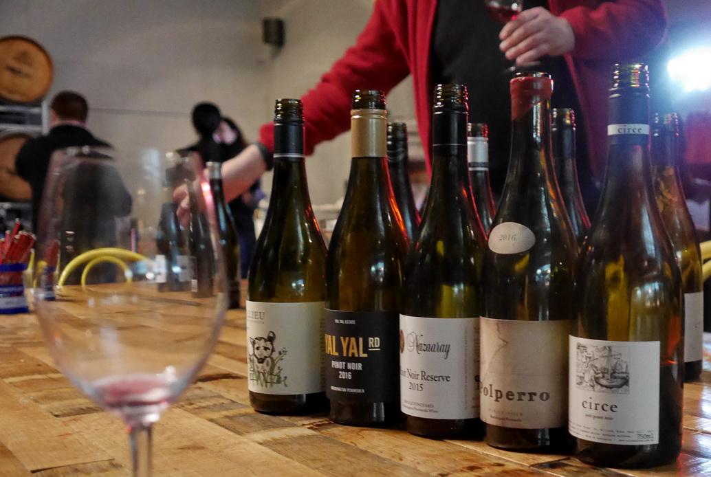 Pinot Blog 2